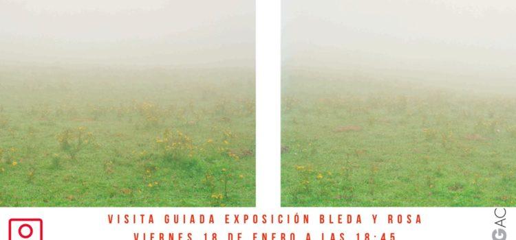 Visita guiada CGAC exposicion Bleda y Rosa.  18/01/2019 18:45